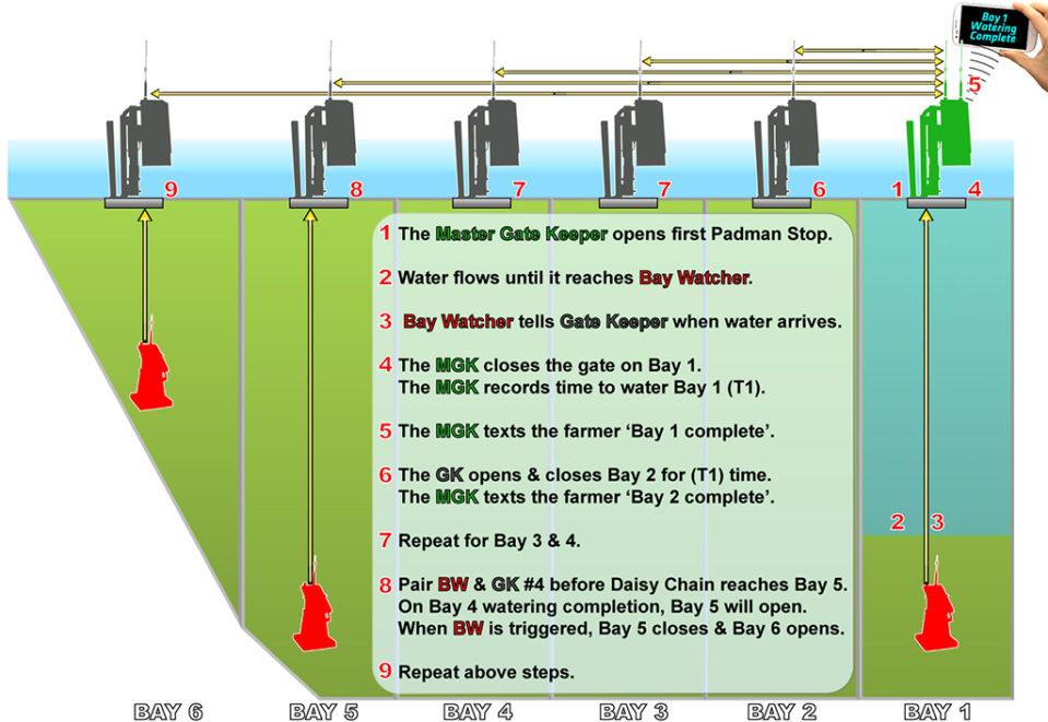 SamC Diagram e1599012794637